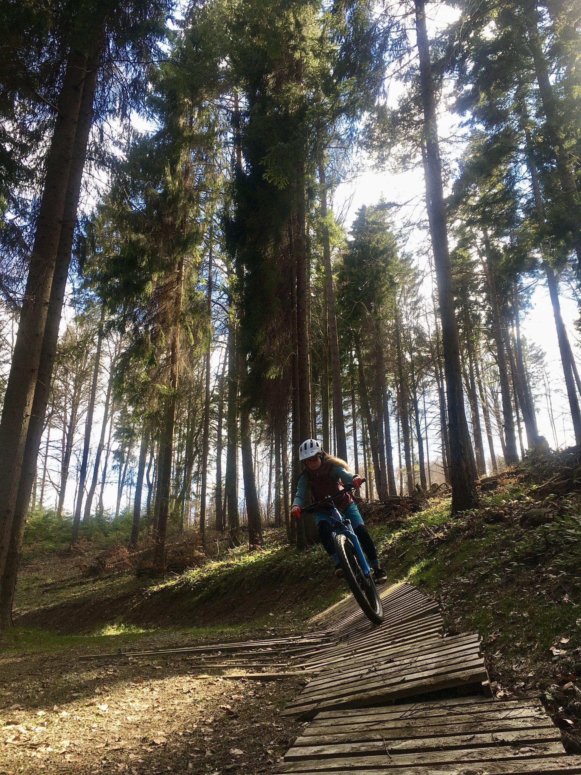 ebikecentrum piwniczna zdrój wypożyczalnia rowerów (3)